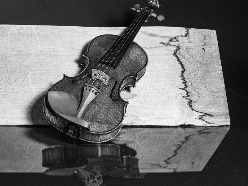 © Peter Bihr   Stilllife Geige und Geigenteile